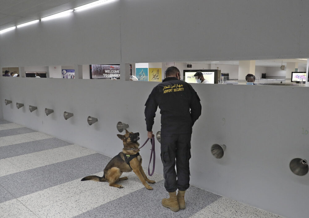 Beirut sniffer dog COVID