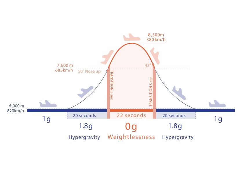 Parabolic Flight
