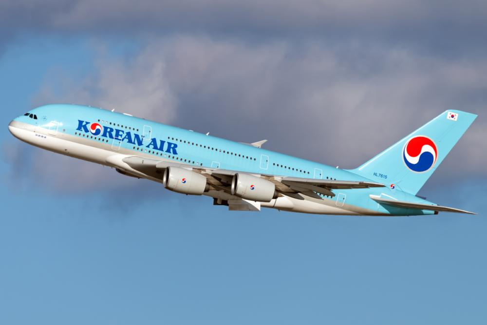 대한민국 어디로 든 항공편