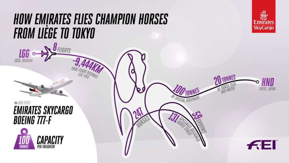 Flying horses to the Olympics
