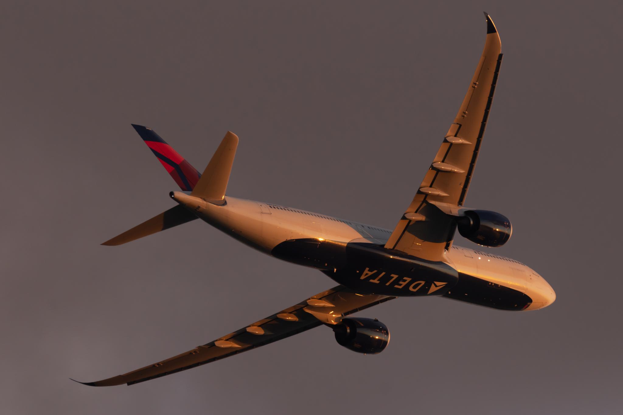 Delta-Airbus-A330-2048x1365.jpg