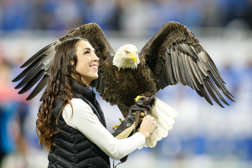 Southwest-Airlines-Bald-Eagle-getty