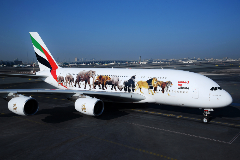 How Aviation Supports The Fight Against The Illegal Wildlife Trade