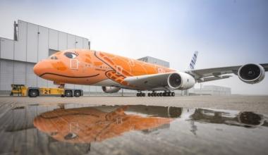 FLYING HONU Orange